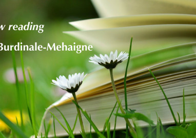 Lecture: Slow Reading en Burdinale Mehaigne